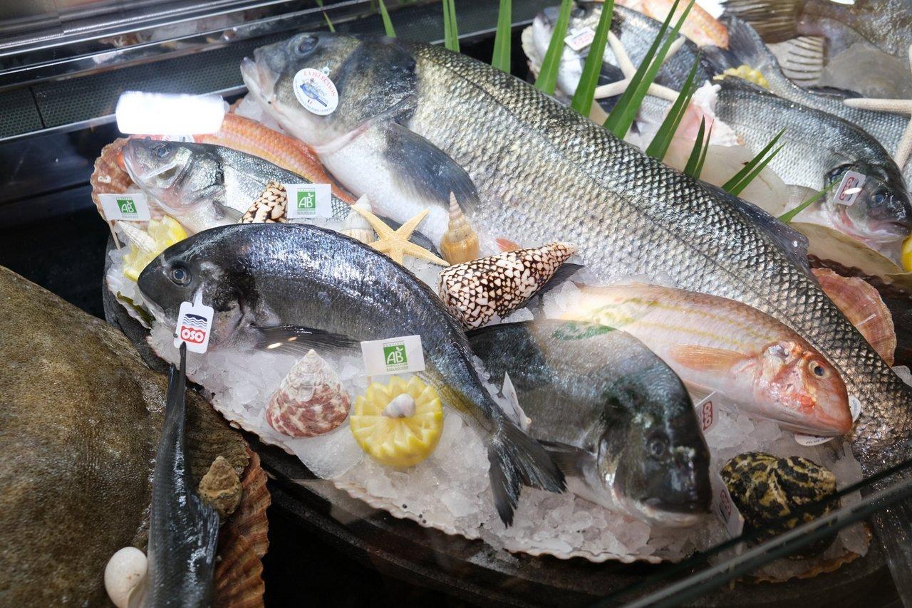 La pêche  resplendit sous les voûtes du Grand Palais