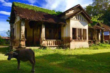 Laos zen bardos