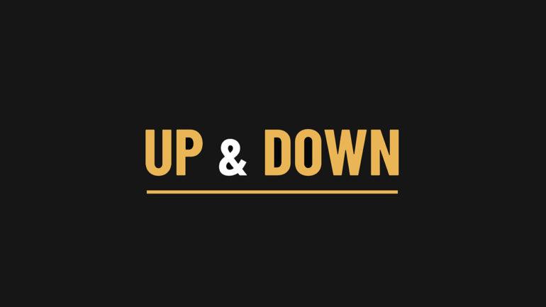 UP & DOWN selector technikart