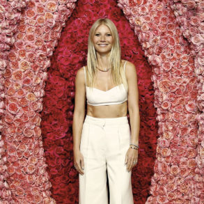 Gwyneth Paltrow technikart
